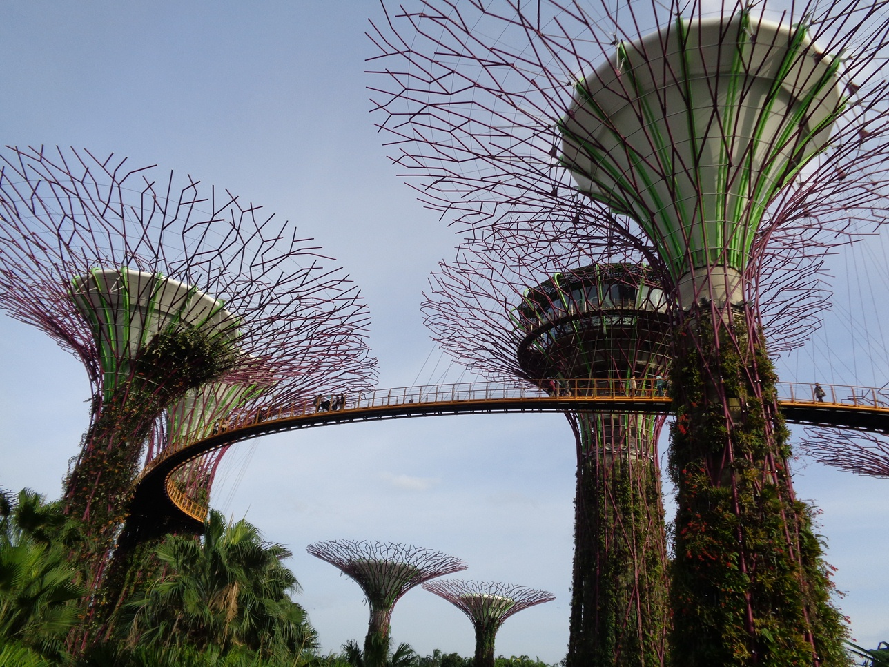 Traveling Johor Bahru Singapore On Weekend Tiket Masuk Garden By The Bay Anak Karna Merasa Kelaparan Akupun Ke Tempat Makan Memang Harga Makanan Disingapur Mahal Apalagi Ditempat Wisata Merogoh Kocek 9 Sgd Untuk Dapat 1 Porsi