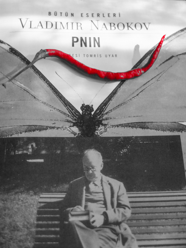 an analysis of nabokovs pnin Pnin is far cosier than lolita, but they do share an expansiveness: one a social comedy swollen with feeling the other perhaps the most boisterous, spirited parody-tragedy you could conceive.