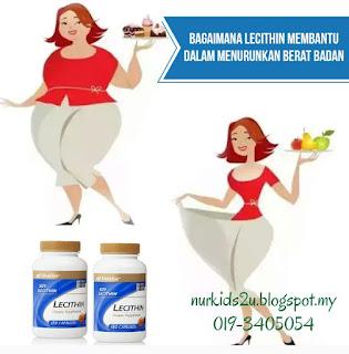 Lecithin bertindak sebagai pengemulsi lemak