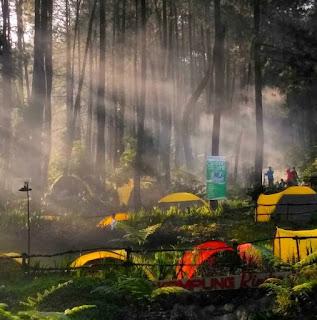 camping ground di kampung rimba