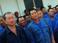 Isu TKA Ilegal Tiongkok, Begini Tanggapan Jokowi