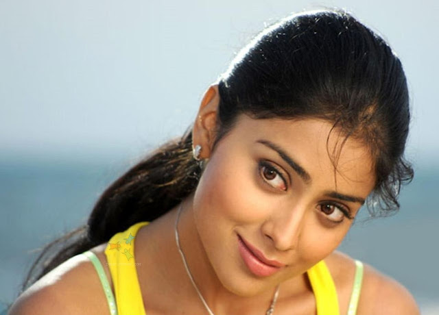 Shriya Saran Hd Wallpapers  Wall Pc-6522