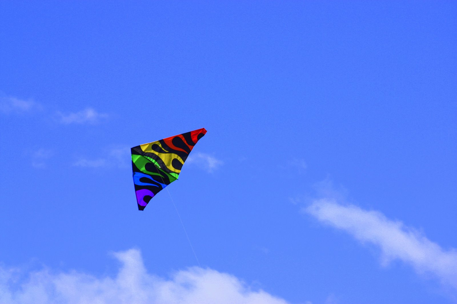 A Kite Flying Kind Of Day