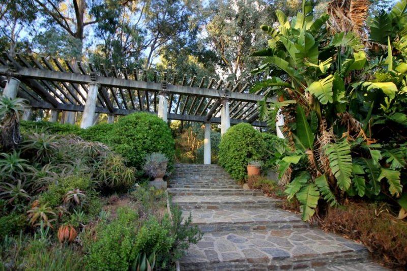 Pérgola. Jardin Sudafrica. Jardin plantas clima mediterráneo (Domaine du Rayol) diseño: Gilles Clement