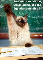 Egyptian cat worship