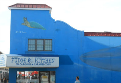 Endangered Blue Whales Wall Mural by David Dunleavy