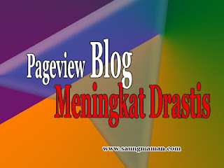 Pageview Blog
