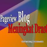 Pageview Blog Meningkat Drastis
