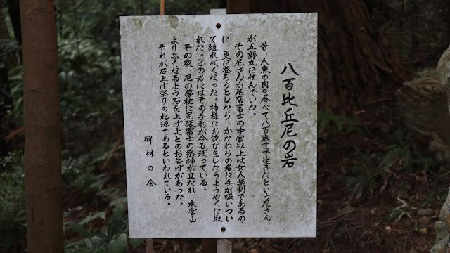 石上げ祭り14