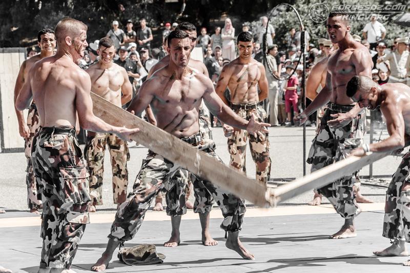 موسوعة الصور الرائعة للقوات الخاصة الجزائرية - صفحة 62 IMG_5532