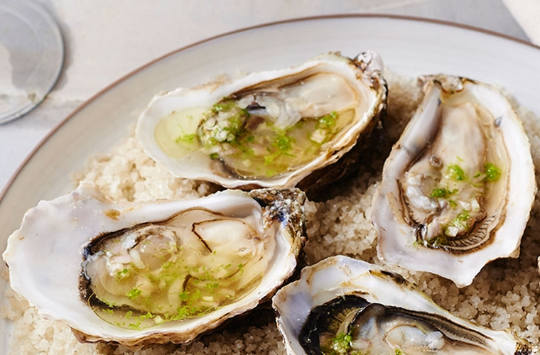 La cocina francesa recetas y noticas de la gastronoma de