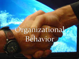 Organization and Organizational Behaviour  material