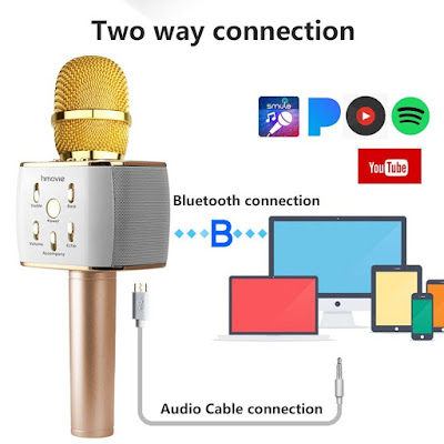 Karaoke Microphone with Bluetooth Wireless Speaker