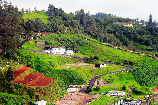 Nilgiris countryside