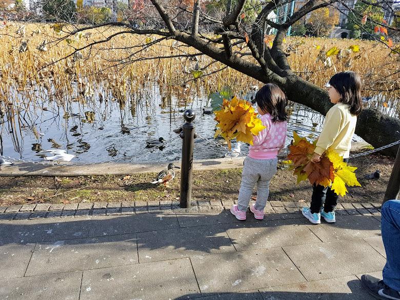 另一側的不忍池,注意到一對姊妹在收集秋天的葉子,不知道正在玩什麼遊戲呢?