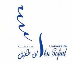 universitè-ibn-tofail-alwadifa-2018-emploi-maroc