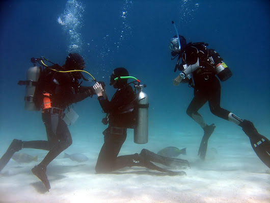 Six Essential Scuba Equipment Needed For Proper Diving