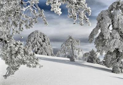 Παράταση διακοπής μαθημάτων σε όλες τις Σχολικές Μονάδες του Δήμου Πύδνας Κολινδρού και για την Πέμπτη 12-01-2017 λόγω χιονόπτωσης και παγετού