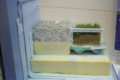 cubierta vegetal danosa
