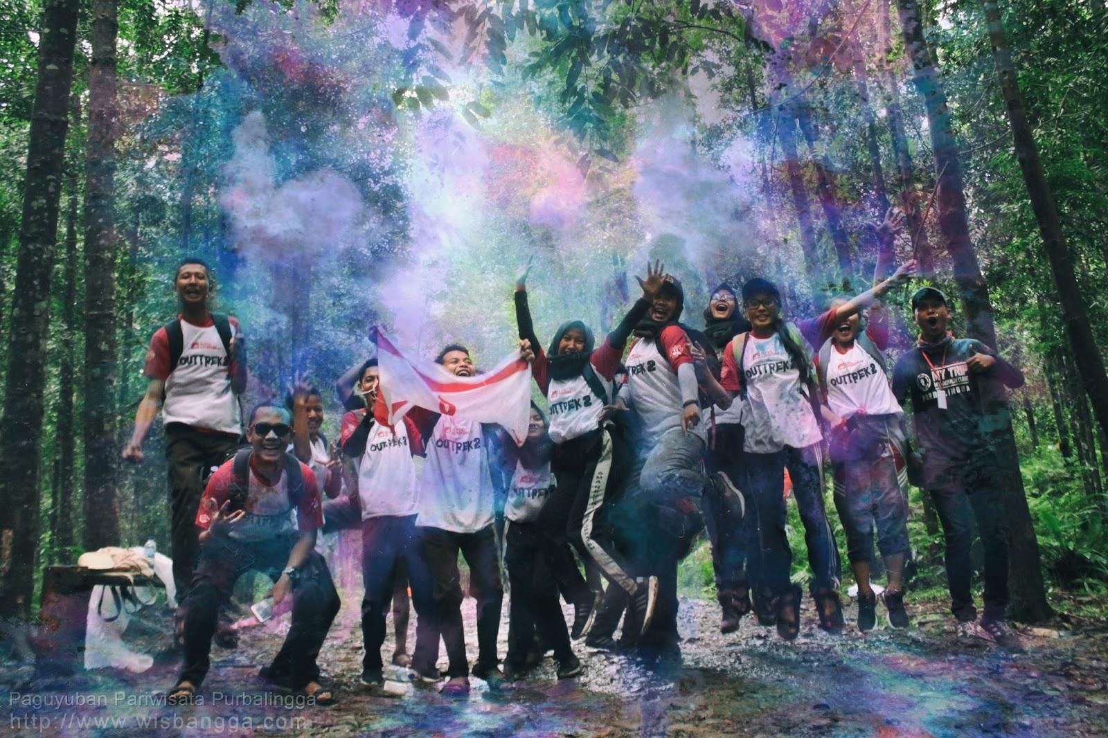 Scout Colour Outtrek #2