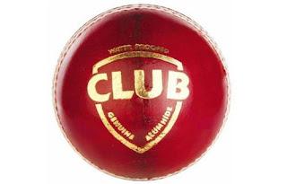 SG Club Leather Ball
