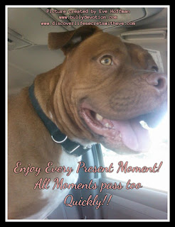 Enjoy every present moment  all moments pass too quickly Happy Bully Day