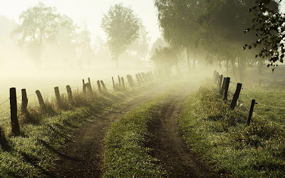 foggy morning widescreen hd wallpaper