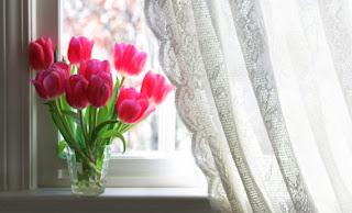 Escoger cortinas