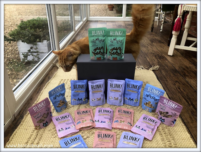 Blink Cat Food Review @BionicBasil® Fudge
