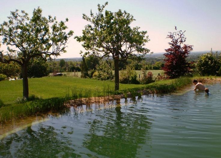 piscina ecológica integrada en el entorno