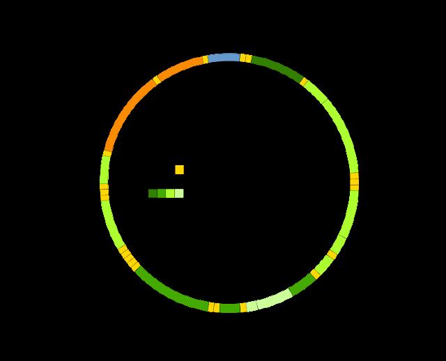 mitochondrialne DNA