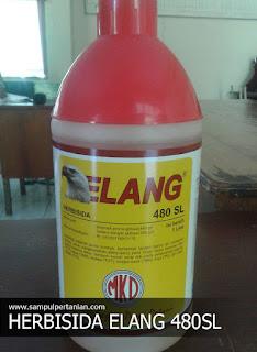 Herbisida ELANG 480 SL bahan aktif Isopropil amina glifosat