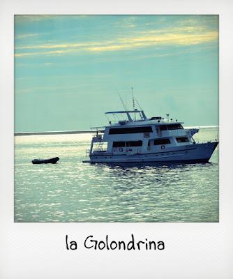 Viaggio di nozze in crociera alle Galapagos con yacht Golondrina