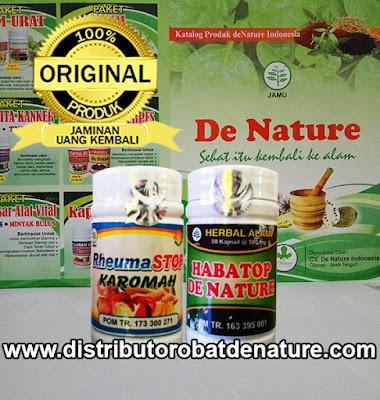 Paket Obat Rematik Herbal