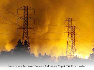 Luas Lahan Terbakar Seluruh Indonesia Capai 857 Ribu Hektar
