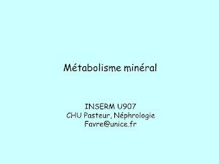 Métabolisme minéral .pdf