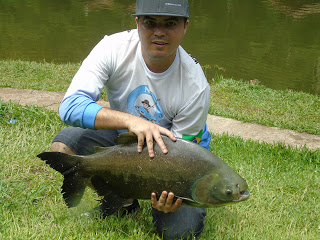 Dica na Pesca, Material Nó de Pesca, Peixe, Pescaria, Tamba,