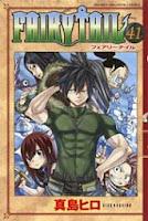 Ver Descargar Fairy Tail Manga Tomo 41