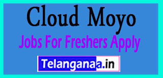 Cloud Moyo Recruitment 2017 Jobs For Freshers Apply