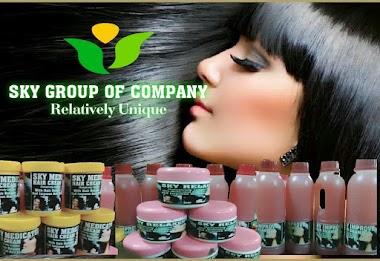 Sky Group Of Company