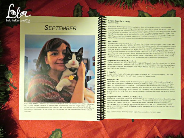 blogging cats weekly planner|lulu.com