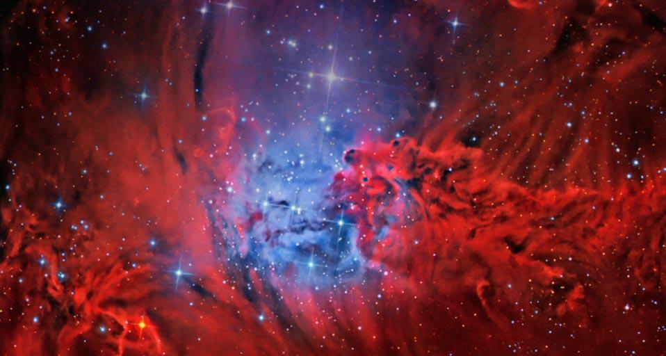 red fox fur nebula -#main