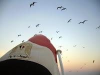 الحرية على الطريقة المصرية