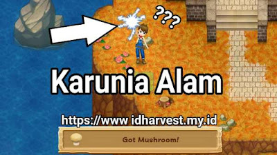 Panduan Harvest Moon: Light of Hope: Tumbuhan Liar | ID Harvest
