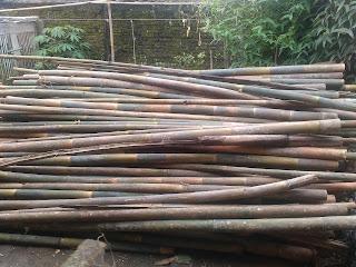 batang bambu