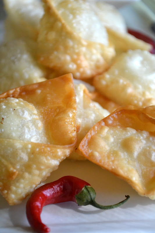 Crispy Goat Cheese Wontons on a white plate