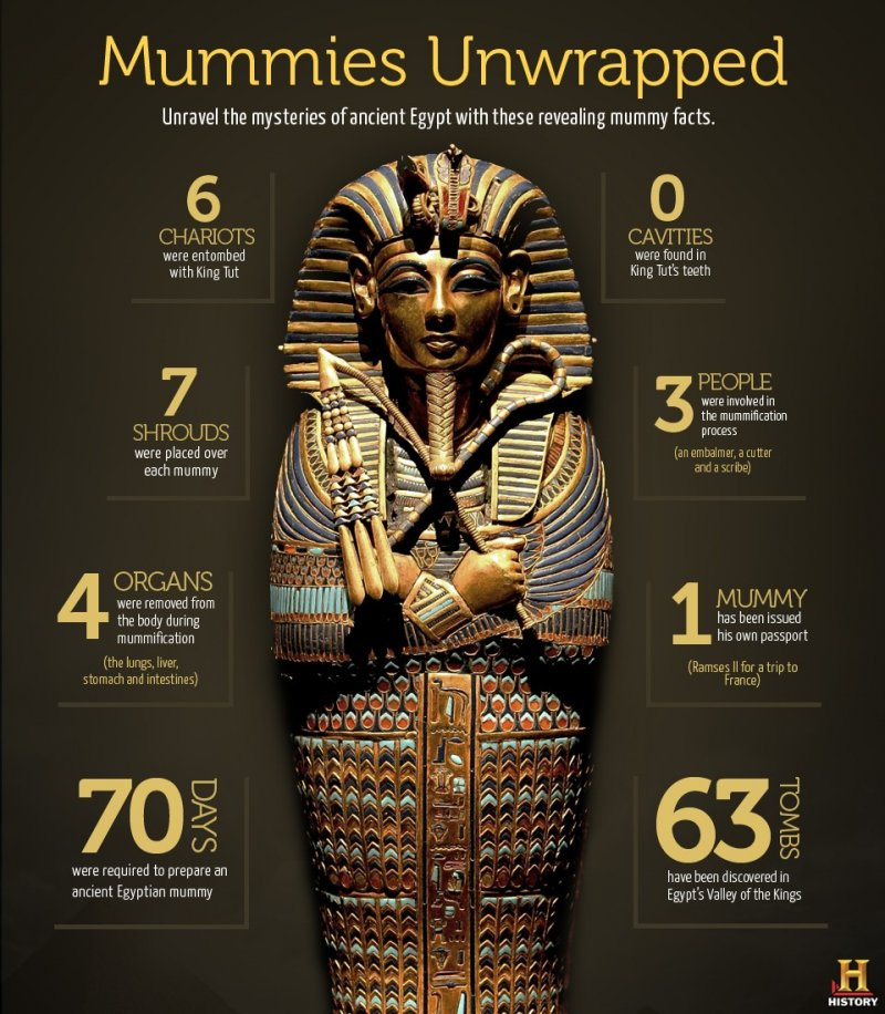 Mummies Unwrapped | EgyptAbout