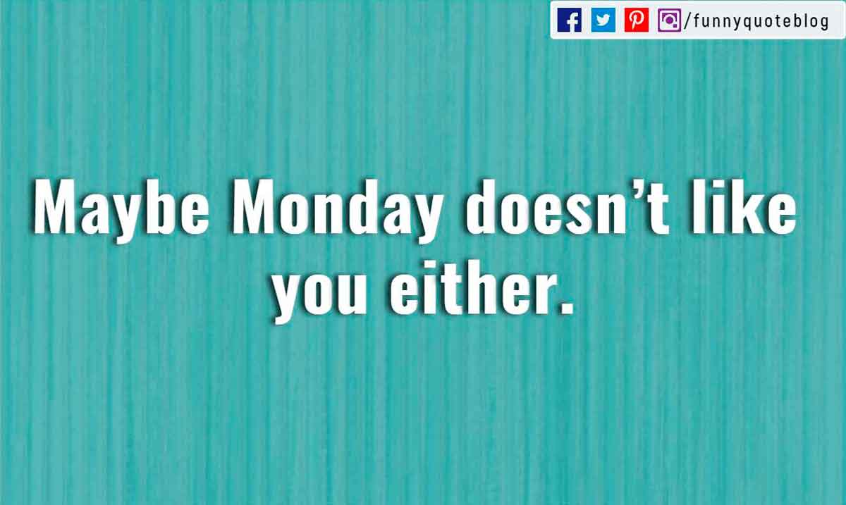 �Maybe Monday doesn�t like you either.�
