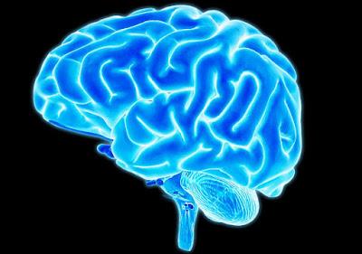 ลืมอย่างไรคล้าย อาการโรคสมองเสื่อม