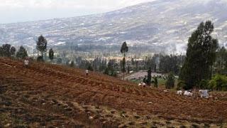 Lembah-Sindoro